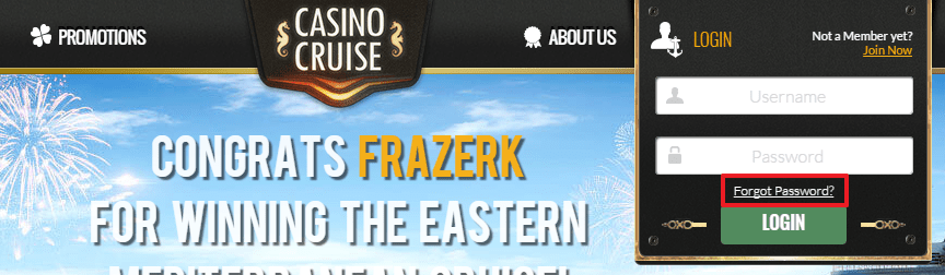 Casino Cruise login 3