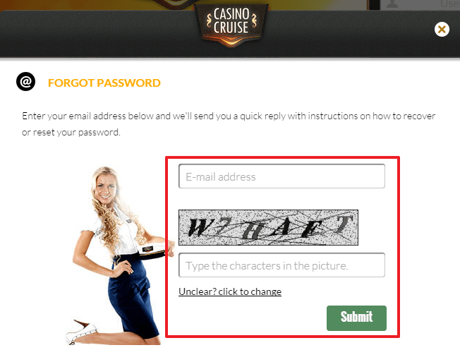Casino Cruise login 4